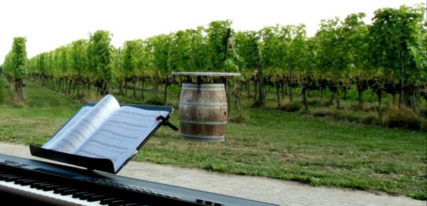 Einaudi concert in the vinyard
